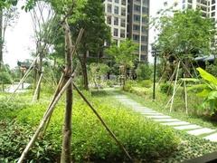 小区中央 园林绿化(小区专家680731)
