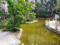 小区小溪河.