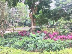 园林实景3.jpg