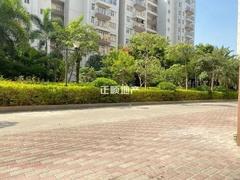 园景4.jpg