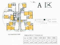 A区8栋标准层
