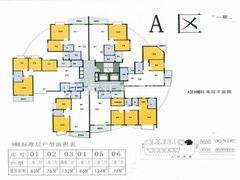 A区9栋标准层