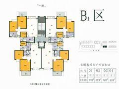 B1区12栋标准层