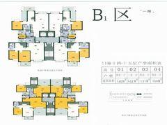 B1区11栋复式