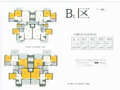 B1区12栋复式