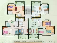 15,20栋2-5层平面图