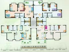 19栋6层平面图