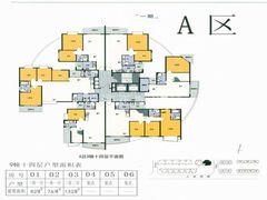 A区9幛十四层