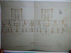 11栋平面图